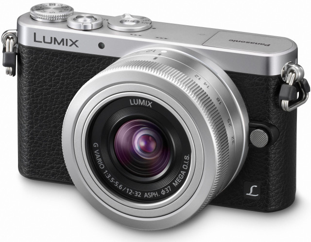 Panasonic DMC-GM1 with 12-32mm f/3.5-5.6 lens