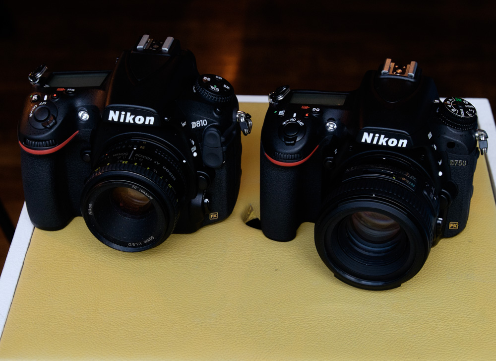 Nikon D750 with AF-S 50mm f/1.8D (Left) and Nikon D750 with AF-S 50mm f/1.4G (Right)